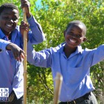 eco-charity-south-africa-garden