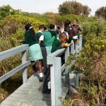 Eco-outing Intaka Island Environmental Education